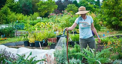 Záhradkár