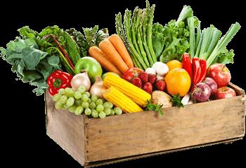 Bednička zeleniny